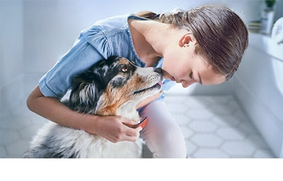 Girl petting a dog